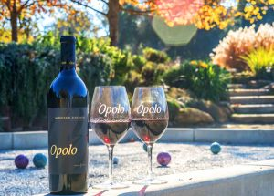 Opolo Wine Dinner